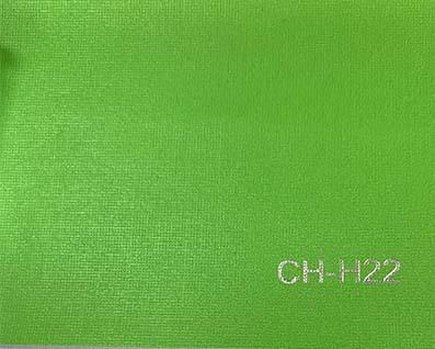 CH-H22