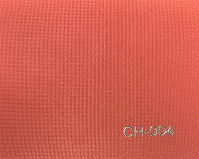 CH-004