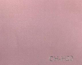 CH-H20
