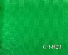 CH-H09