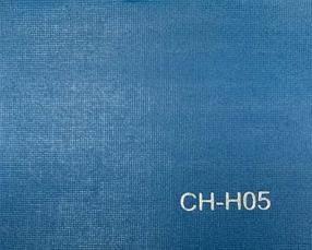 CH-H05