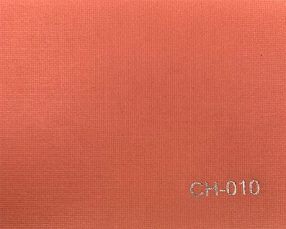 CH-010